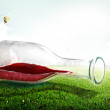 Glass bottle with wine on green grass — Stock Photo