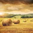 Field of freshly bales of hay with beautiful sunset — Stock Photo