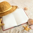 Book with straw hat and seashells in sand - Foto Stock