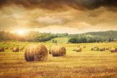 Campo di appena balle di fieno con bel tramonto — Foto Stock