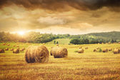 Field of freshly bales of hay with beautiful sunset — Stok fotoğraf