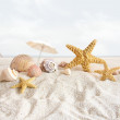 Starfish and seashells at the beach — Stock Photo