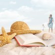 Straw hat , book and seashells in the sand — Stock Photo