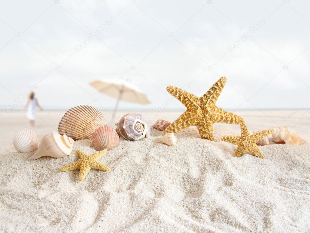 Starfish and seashells in the sand at the beach — Stock Photo #5660206