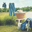 Jeans hanging on clothesline on a summer afternoon — Stock Photo