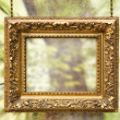Stock Photo: Gilded frame hanging with abstract background