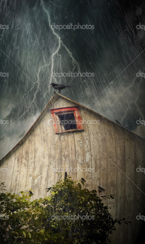Spooky old barn with crows on a stormy rainy night  Foto de Stock   #6082767