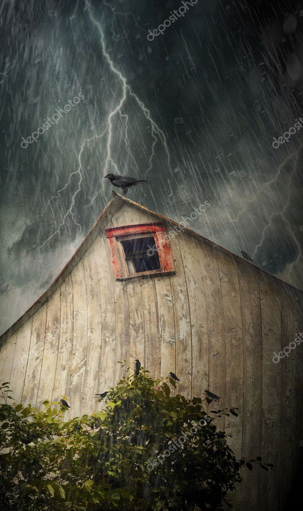 Spooky old barn with crows on a stormy rainy night  Stockfoto #6082767