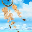 Sea shells blowing in the wind - Stock Photo
