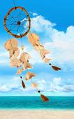 Conchas de mar soplando en el viento — Foto de Stock