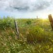 Stock Photo: Old country fence on prairies
