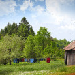 Laundry drying on clothesline on a summer day - Stock Photo