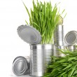 Stock Photo: Wheatgrass in aluminum cans on white