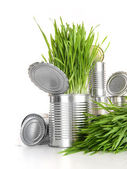 Wheatgrass in aluminum cans on white — Stock Photo