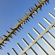Stock Photo: Barbed wire fence