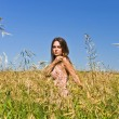 Young woman in a field of rye — Stock Photo