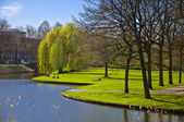 Green lawn on the canal bank — Stockfoto
