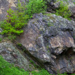 Stock Photo: Rocks with moss and trees