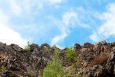 Skały z trawy i drzew z nieba — Zdjęcie stockowe