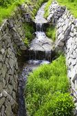 Mountain stream running through a forest — Stock Photo