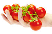 あなたの手の男に白で隔離されるトマトの束 — ストック写真