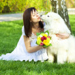 Young bride and the dog on the nature - Foto Stock