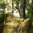 Just married on the nature — Stock Photo #5966143