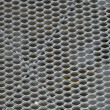 Background iron net — Stock Photo