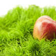 Stock Photo: Apple lying on green grass