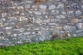 レンガの壁と緑の芝生 — ストック写真