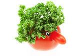 Tomate con la nariz y verde aislado en blanco — Foto de Stock