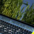 Laptop on the green grass — Stock Photo