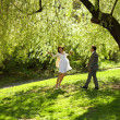 Just married standing under the greenwood tree — Stock Photo
