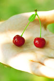 Cherry in hand man — Stock Photo