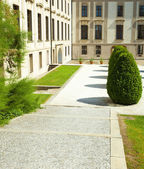 Square of the city with green bushes — Fotografia Stock