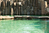 Pool with blue water and rocks — Stock Photo
