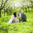 Just married in a flowering garden — Stock Photo