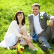 Just married in a flowering garden sitting on the grass — Stock Photo #6000126