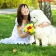 Bride with dog Samoyed sitting on the grass - Foto Stock
