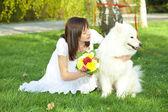 Bride with dog Samoyed sitting on the grass — Stock Photo