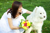 Bride with dog Samoyed sitting on the grass — Stockfoto