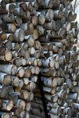 Mountain Firewood — Stock Photo