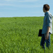 Young man standing with a laptop in the green field — Stock Photo