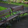 Wet benches in the park on rain — Stock Photo