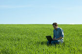 Young man using laptop in the field — Stock Photo