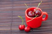 Cherry and red cup on a bamboo mat — Stock fotografie