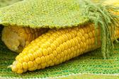 Corn lying on the mat — Stock Photo