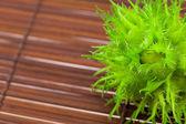 Noisettes sur une natte de bambou — Photo