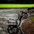 Royalty-Free Stock Photo: Wet benches in the park