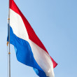Dutch flag against the blue sky - 图库照片